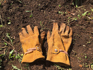 Diamond Gardening Gloves